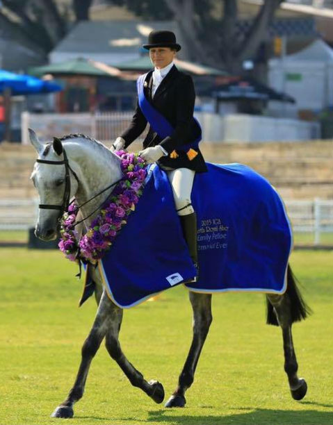Debbie Garland and CP Glamour at Emily Pellow Memorial Turout, Perth Royal.