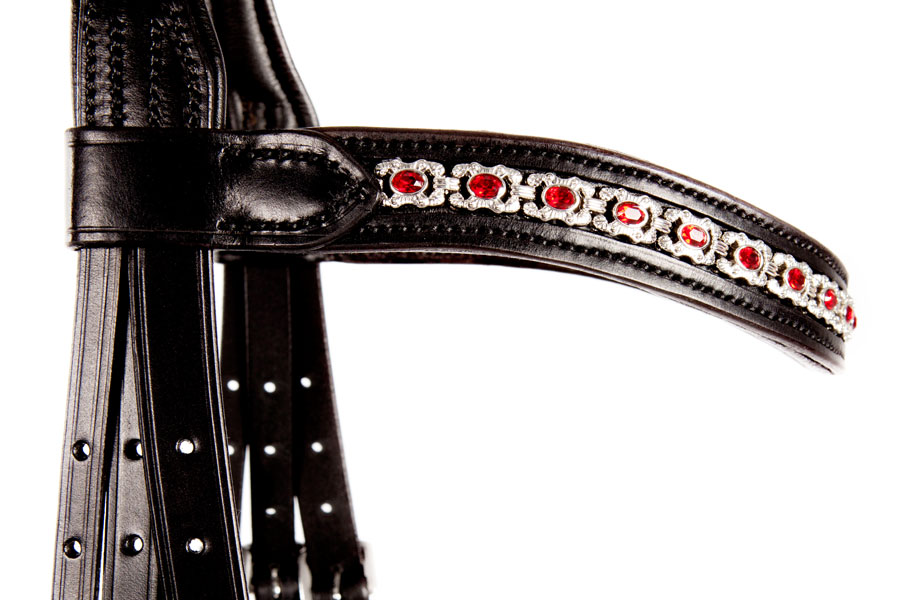 Red and silver browband